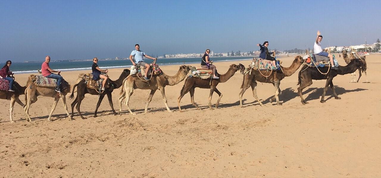 InterWorks Digital Nomad camel ride
