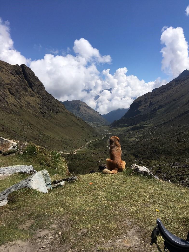 Carl digital nomad Peru