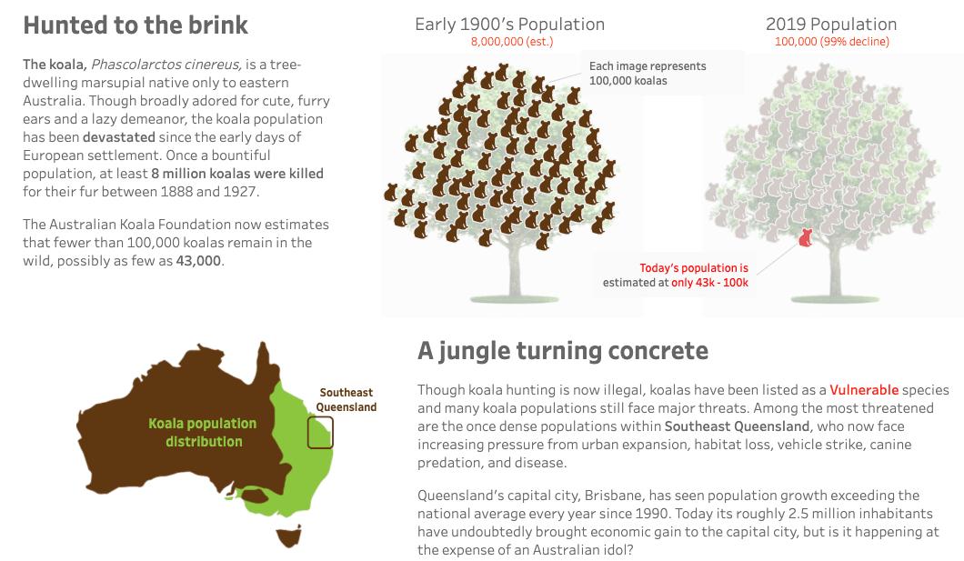 Fall of the Queensland Koala data viz