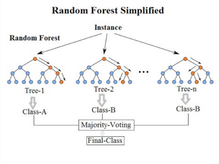 Random forest simplified